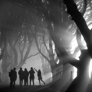 英国风景摄影师年奖 2013 获奖作品选