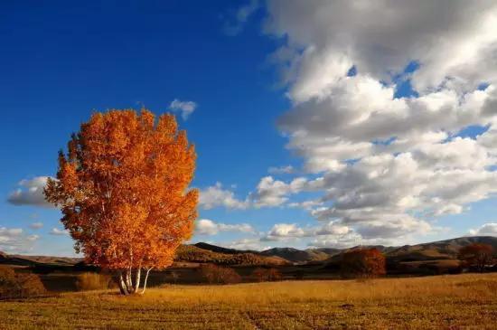 国内9、10月最值得去的9个绝美人间天堂